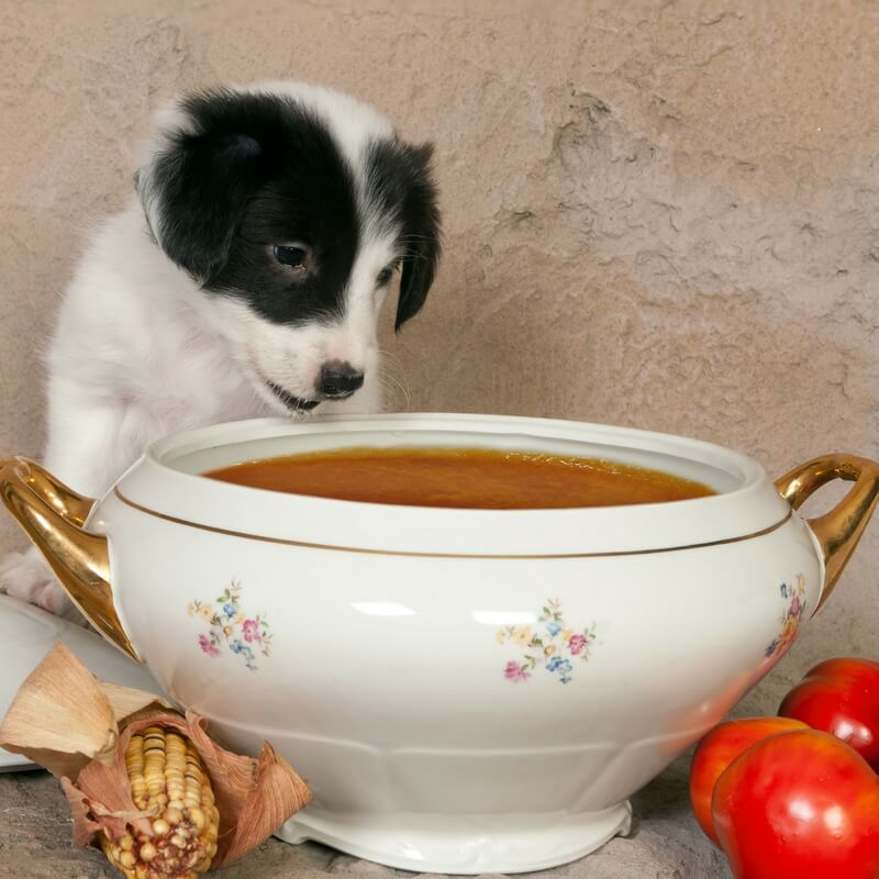 Soup Tureens Have Two Handles-And Other Training Blunders